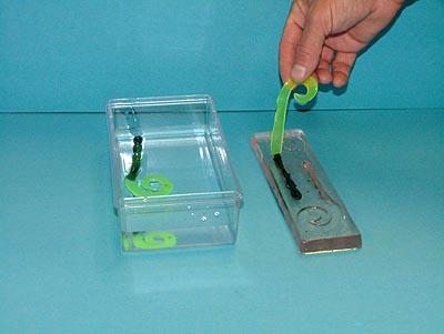 Soft bait molds for Soft plastic fishing molds